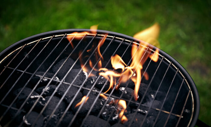Scoop up partially used charcoal to recycle the next time you grill.  (senk/Shutterstock)