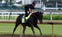 Judge Orders Private Plane Fly Kentucky Derby Winner's Sample to NY but Limits Testing