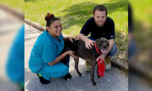 Formerly Homeless Man Gets Job, Reunites With Dog He Had to Surrender: 'A Better Life'