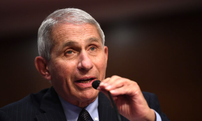 Dr. Anthony Fauci, director of the National Institute for Allergy and Infectious Diseases, testifies at a Senate hearing in Washington, on June 30, 2020. (Kevin Dietsch/Pool/Getty Images)