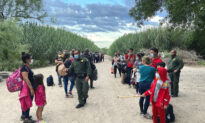 Texas to Build Its Own Border Wall and Arrest Illegal Immigrants: Governor