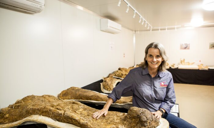 Robyn Mackenzie – Eromanga Natural History Museum director and palaeontologist with Cooper's actual fossils (Eromanga Natural History Museum)