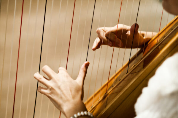 Woman,Playing,The,Harp
