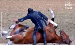 Funniest Horse Act Ever