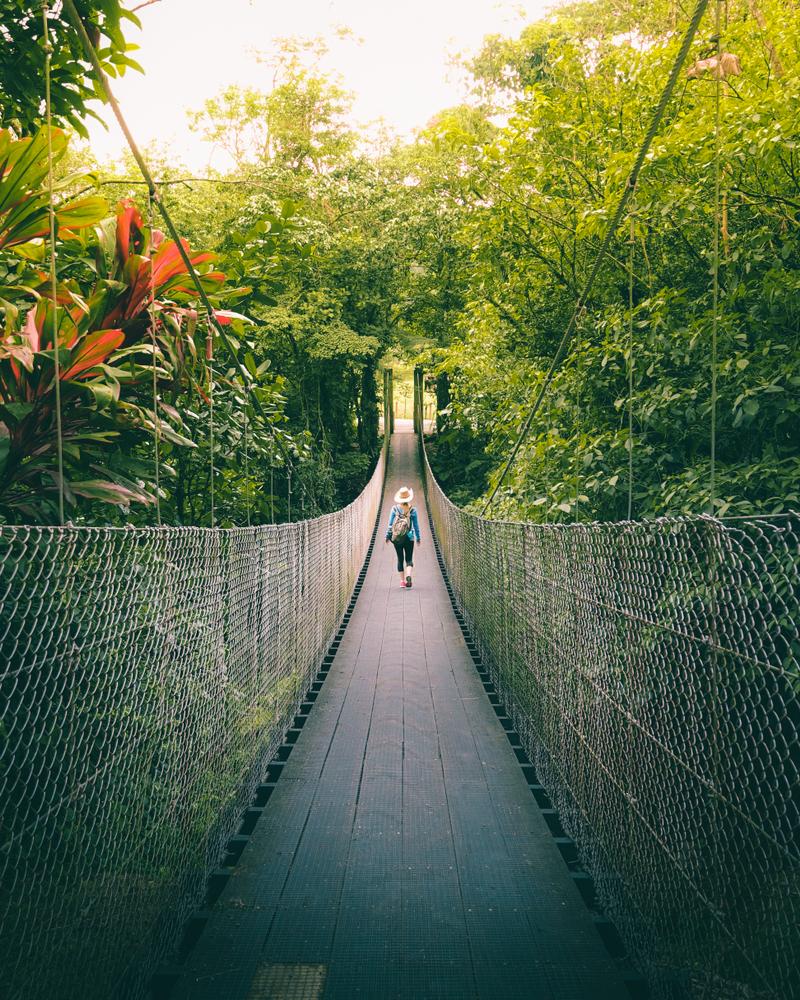 Woman,Walking,On,The,Bridge,In,The,Jungle,Of,Costa