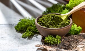 Enjoy These 9 Foods for a Late-Spring Detox