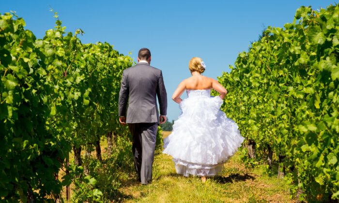 Can a winery do weddings? That's among the many issues up for debate. (Joshua Rainey Photography/shutterstock)