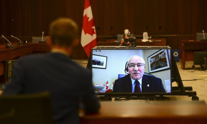Committee Chair and Liberal MP Wayne Easter speaks via videoconference during a House of Commons finance committee in the Wellington Building on July 30, 2020. (The Canadian Press/Sean Kilpatrick)