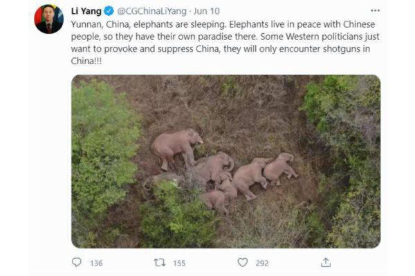 1Li Yang twitter screenshot June10