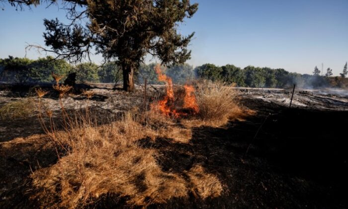A field on fire is seen after Palestinians in Gaza sent incendiary balloons over the border between Gaza and Israel, Near Nir Am, on June 15, 2021. (Amir Cohen/Reuters)