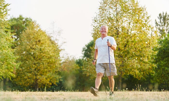 Older adults that reduce their sitting time and walk more experience significantly improved cognitive function, physical function, and quality of life. (Robert Kneschke/Shutterstock)