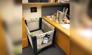 College Professor Posts Photo of New 'Lab Equipment' for Grad Student With New Baby—and It Goes Viral