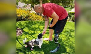 Double Amputee Dog Rescued From Abusive Home Adopted by Police Officer Who Lost Leg in Crash