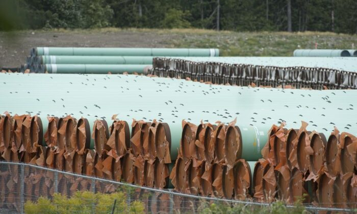 Pipes for the Trans Mountain pipeline project are seen at a storage facility near Hope, B.C., on Sept. 1, 2020. A federal regulator says it has lifted a stop work order on tree cutting and grass mowing work along the Trans Mountain pipeline expansion project route. (The Canadian Press/Jonathan Hayward)