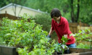 Weathering Life's Storms by Rooting Children in a Garden