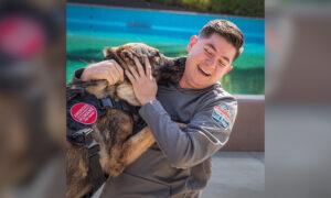 Ex-Army K9 Handler Reunites With Bomb Sniffer German Shepherd for Touching Adoption