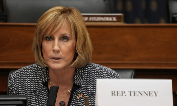 Rep. Claudia Tenney speaks as U.S. Secretary of State Antony Blinken testifies before the House Committee on Foreign Affairs on The Biden Administration's Priorities for U.S. Foreign Policy on Capitol Hill in Washington on March 10, 2021. (Ken Cedeno-Pool/Getty Images)