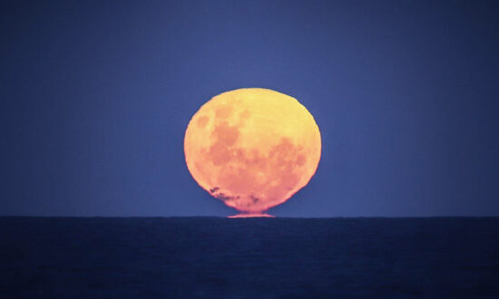 'Strawberry Moon' on June 24 Will Be the Last Supermoon of 2021—Here's What You Need to Know: