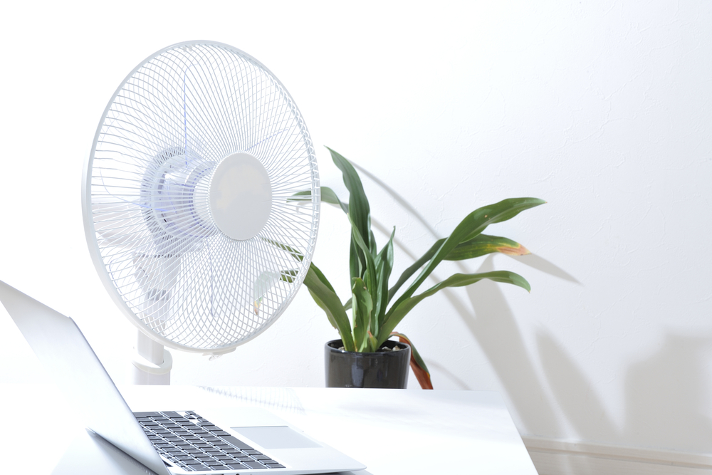 Pc,And,Fans,,At,The,Office