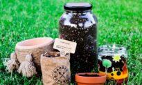 Make learning fun with garden kits
