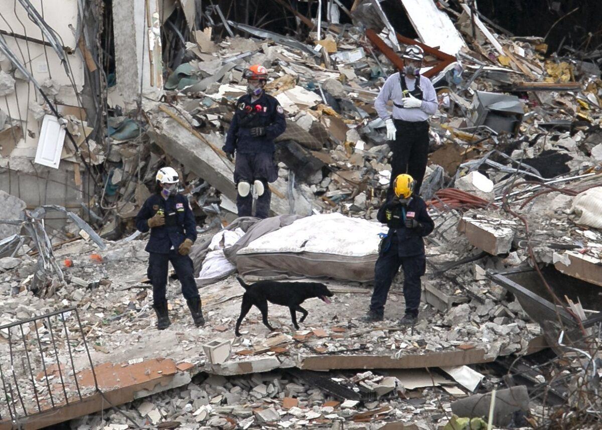 look through rubble for survivors