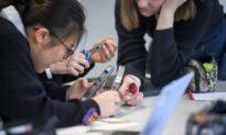 School Mobile Phone Bans Considered in Behaviour Consultation