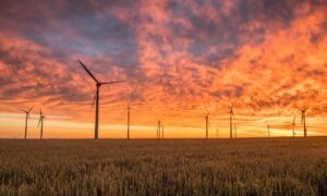 Will Investors Hit the Pause Button on Sustainable Investing?