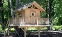Building Childhood Dreams: DIY Backyard Treehouses, Ninja Courses, and More