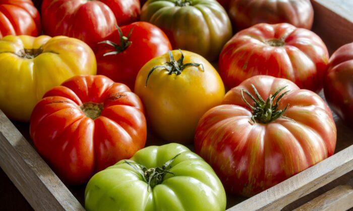 Seek out heirloom varieties to experience tomatoes' full spectrum of colors, flavors, and textures. (Teri Virbickis/Shutterstock)