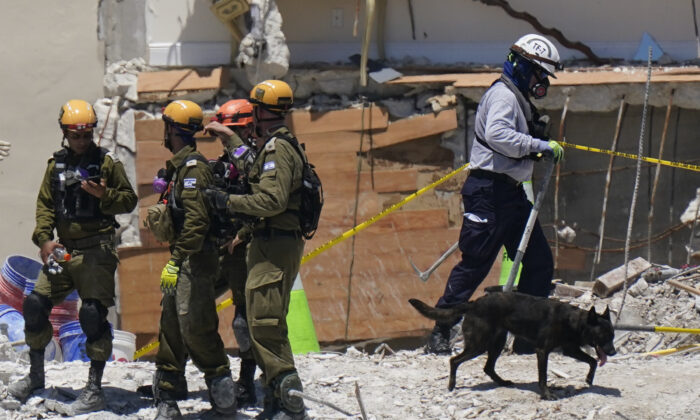 A dog aiding in the search walks past a team of Israeli search and rescue personnel, left, atop the rubble at the Champlain Towers South condominium in Surfside, Fla., on July 2, 2021. (Mark Humphrey/AP Photo)