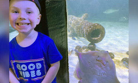 A 'Really Happy' Stingray Photobombs 3-Year-Old Boy During a Trip to the Zoo