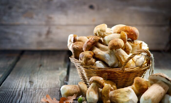 Researchers say eating mushrooms is strongly associated with lower risks of cancer and neurodegenerative disease. (Subbotina Anna/Shutterstock)