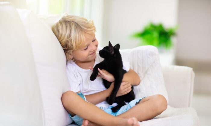 Recent studies have shown that pets inside the home protect children from allergies, and the protection increases with the number of pets. (FamVeld/Shutterstock)
