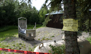 Grizzly Bear Is Fatally Shot After Killing California Woman