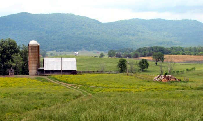 A farm near Speedwell in Claiborne County, Tenn., on May 17, 2015. (Brian Stansberry via Wikimedia Commons/CC BY 3.0)