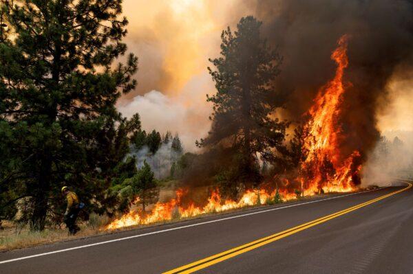 california-wildfires-surge