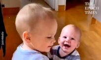 Adorable Toddler Helps Baby Brother Walk Around the House