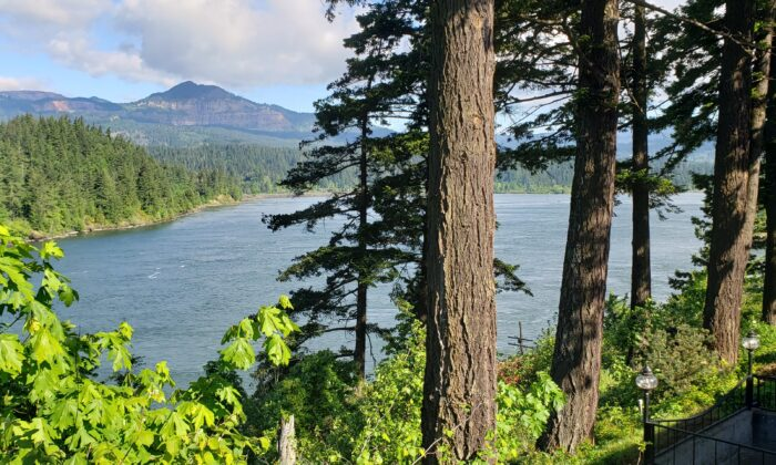 The drive from Portland to Mt. Hood follows the Columbia River to Hood River. This was taken near the Bridge of the Gods, which connects Oregon with Washington. (Anita L. Sherman)