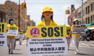 Forced Organ Harvesting in China Is Medical Genocide for Profit
