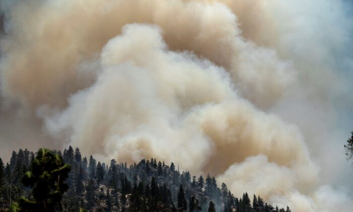 Smoke rises from the Dixie Fire burning along Highway 70 in Plumas National Forest, Calif., on July 16, 2021. (Noah Berger/AP Photo)