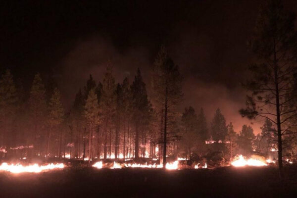 Bootleg Fire Incident Command