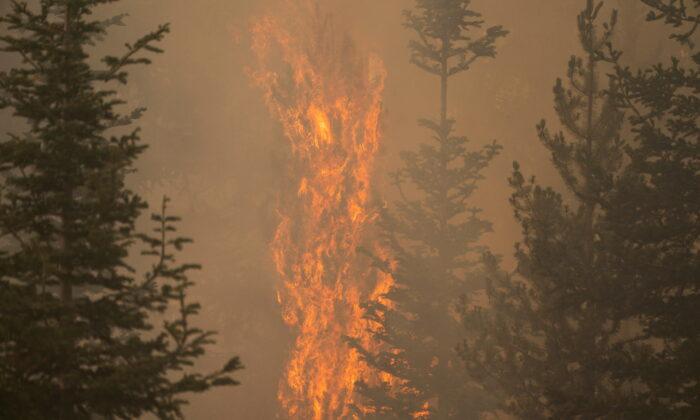 The Bootleg Fire burns through vegetation near Paisley, Ore., on July 20, 2021. (David Ryder/Reuters)