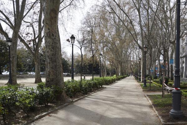 A general view of Paseo del Prado