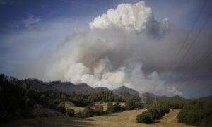 Wildfire Burns in Northeast Spain, Summer Camp Evacuated