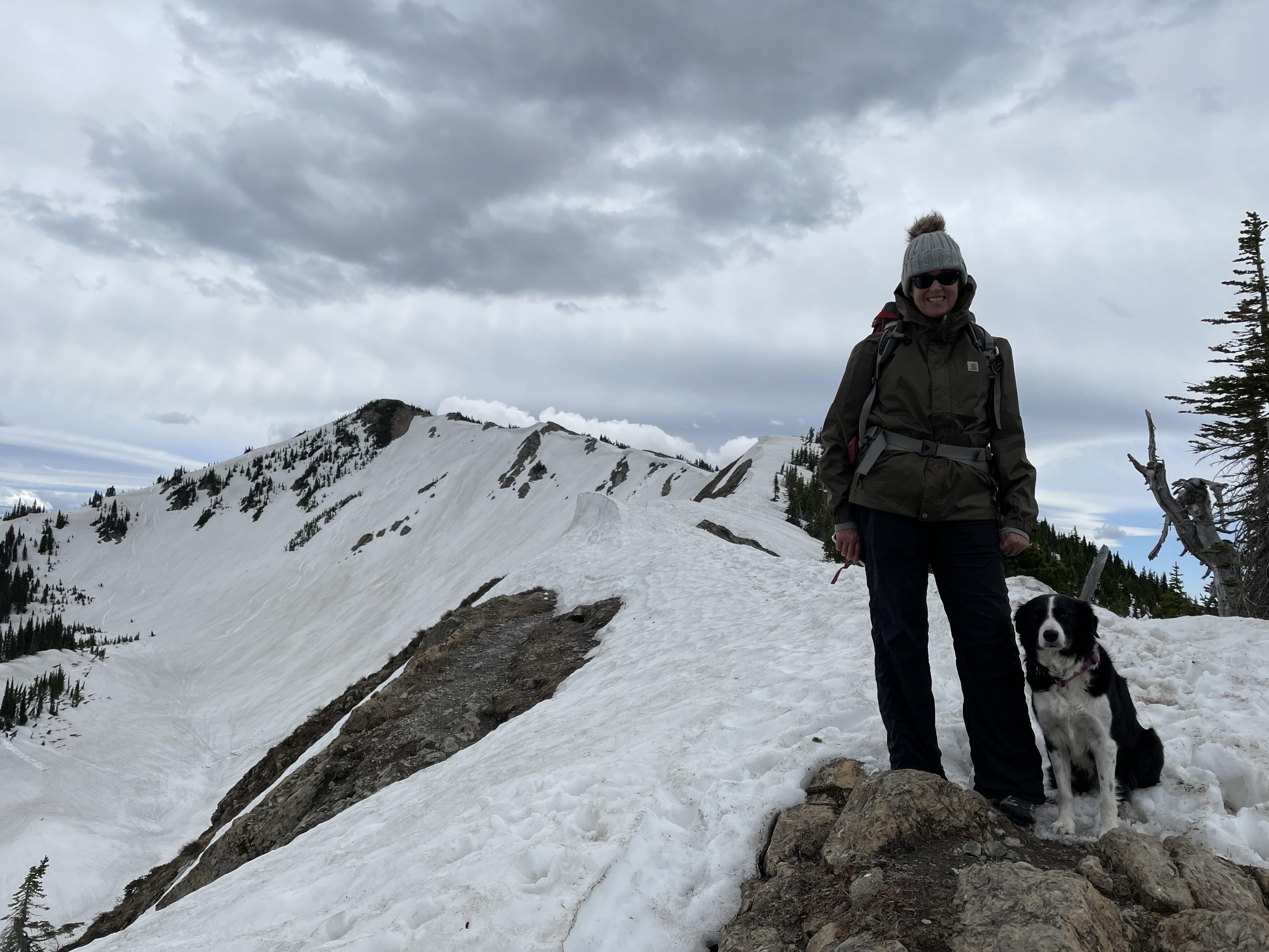 The snowy summit.