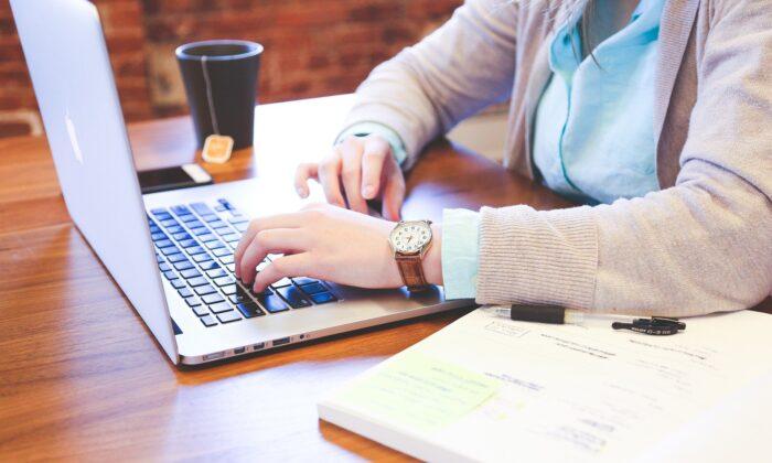 A person using a laptop. (StartupStockPhotos/Pixabay)
