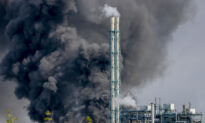 No Toxic Fallout From German Chemical Blast: Official