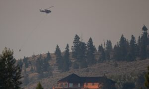 'The Fire's Gotten So Huge': BC Residents Voice Frustration With Wildfire Response