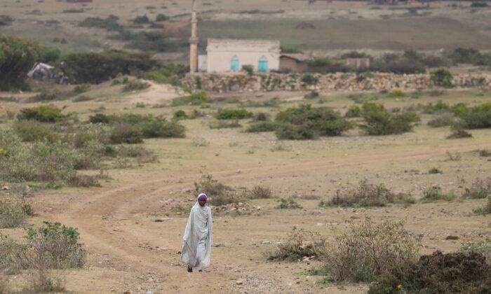 An internally displaced Ethiopian girl walks back to her village Sariir in Somali Region, Ethiopia, on Jan. 13, 2020. (Giulia Paravicini/Reuters)