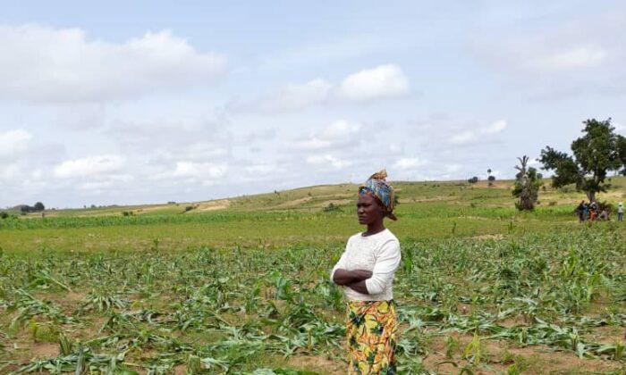 Kaneng Ishaya stands in her despoiled corn farm. (Masara Kim/The Epoch Times)